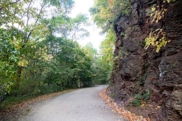 Nine Mile Run Trail in Pittsburgh, PA