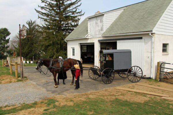 Amish Farm stay in Lancaster County, PA