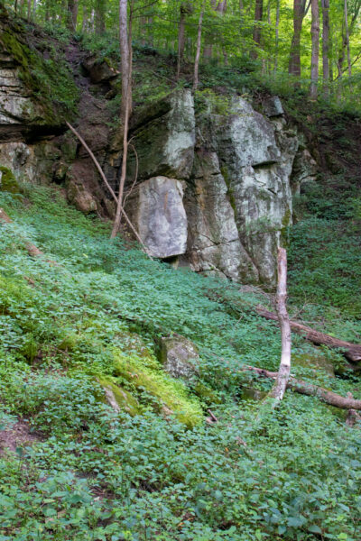 Limestone quarry in Canoe Creek State Park near Altoona PA