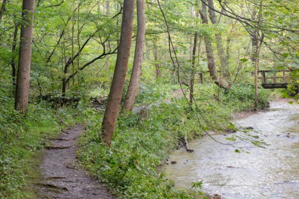 Limestone Loop Trail next to Mary Ann's Creek in Canoe Creek State Park