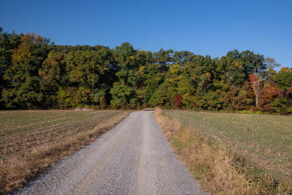 Road to Cleland Rock in McConnells Mill State Park in PA
