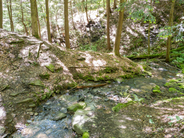 Stream crossing on the Gerard Trail in Venango County PA