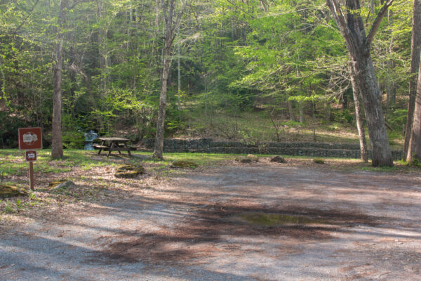 Picnic table at Upper Pine Bottom State Park in Lycoming County PA