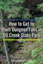 Plum Dungeon Falls in Pennsylvania's Oil Creek State Park