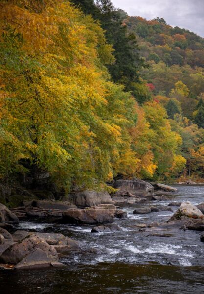 Youghiogheny River from the Meadow Run Trail in Ohiopyle State Park