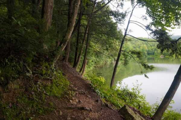 Lakeview Trail in Greenwood Furnace State Park