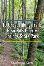 Hiking Trails near Cherry Springs State Park