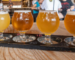Levity Brewing Company: Heralded Craft Beer in Indiana, PA