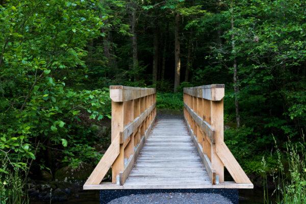 Bridge over Honey Creek in Reeds Gap State Park in PA