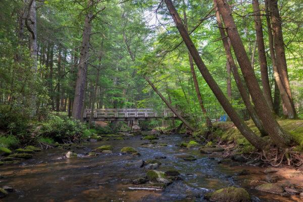 Honey Creek and a bridge in Reeds Gap State Park in Mifflin County Pennsylvania