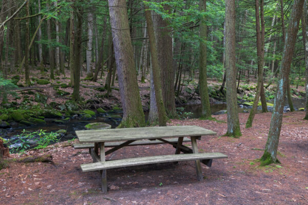 Picnic table in Reeds Gap State Park near Lewistown PA