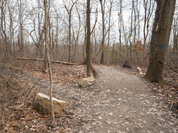Waterfall Trail in Pittsburgh's Settler's Cabin Park