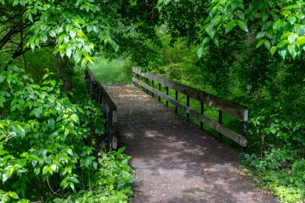 Wooden bridge on the Sunken Garden Trail in Butler County PA