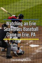 Erie Seawolves baseball game