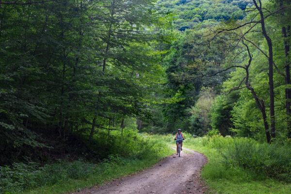 A woman biking the Clarion-Little Toby Creek Trail near Brockway PA