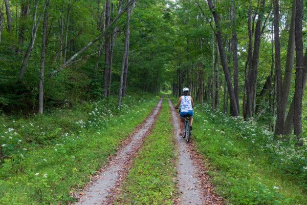 Woman biking the Little Toby Creek Rail Trail in the PA Wilds