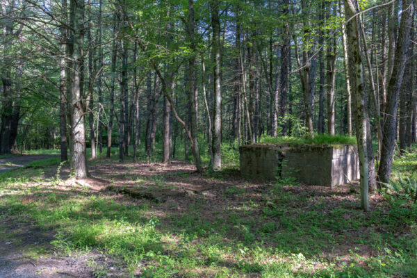 Abandoned foundation at the German POW Camp in Fulton County Pennsylvania