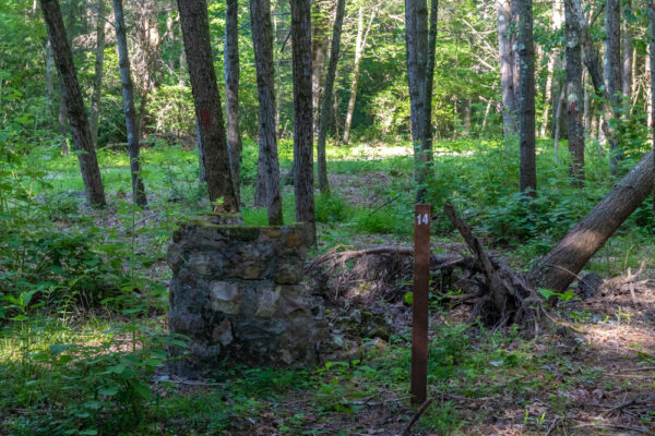 Numbered sign next to ruins in Buchanan State Forest