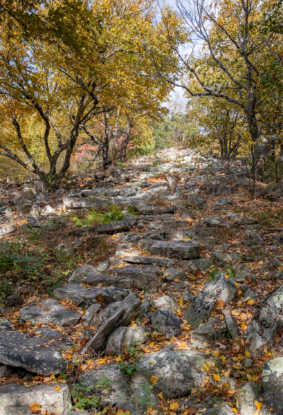 Standing Stone Trail atop Stone Mountain in Huntingdon County PA