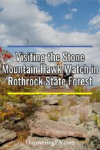Stone Mountain Hawk Watch in Rothrock State Forest in Pennsylvania