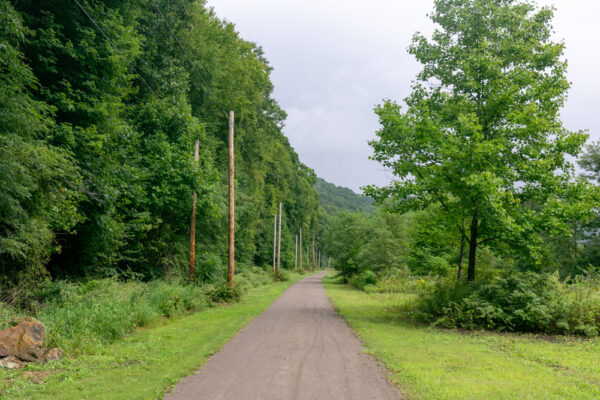 The gravel covered Armstrong Trail passing through a wooded area.