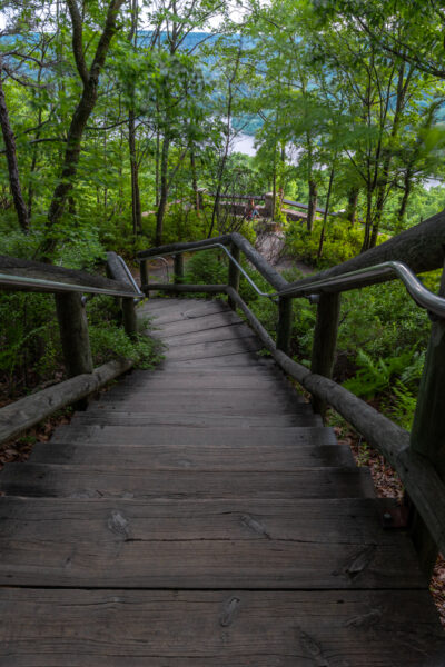 Staircase of the Rimrock Overlook Trail in the Allegheny National Forest of PA