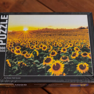 Sunflower Field in Pennsylvania